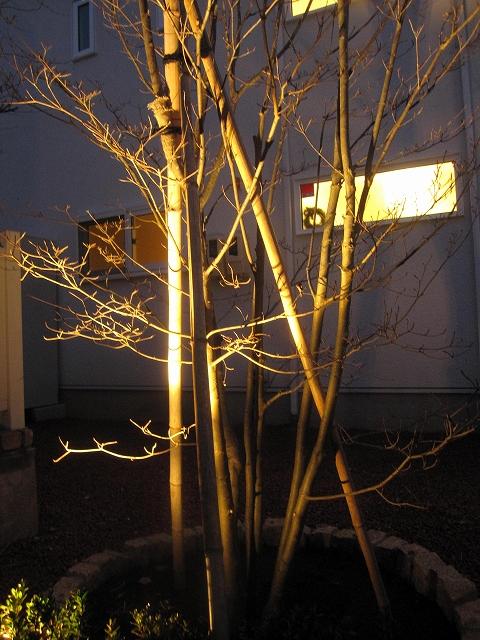 広いスペースでの灯り 株式会社トレド 長野県A様邸 Spectacular garden lighting by lighting professionals. Enjoy a dramatic, romantic, even mysterious scene comparing to a day time.