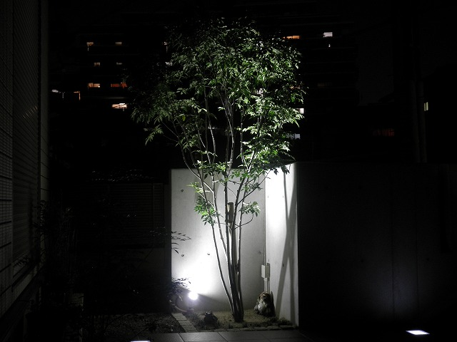 LEDライティング Scene株式会社 大阪府 石田様邸 Spectacular garden lighting by lighting professionals. Enjoy a dramatic, romantic, even mysterious scene comparing to a day time.