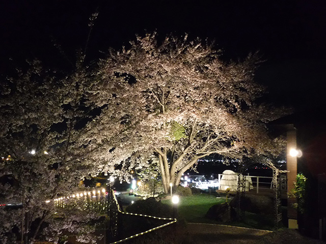 四季を楽しむライティング プレックスガーデン 長野県I様邸 Spectacular garden lighting by lighting professionals. Enjoy a dramatic, romantic, even mysterious scene comparing to a day time.