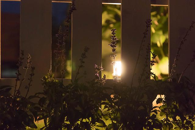 日中も夜でも庭空間を使えるライティング 株式会社ボックスウッド 千葉県T様邸 Spectacular garden lighting by lighting professionals. Enjoy a dramatic, romantic, even mysterious scene comparing to a day time.