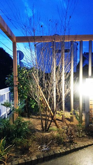 フレームで魅せる癒しの空間 サコヤマエクステリア SAKOYAMA EXTERIOR 山口県N様邸 Spectacular garden lighting by lighting professionals. Enjoy a dramatic, romantic, even mysterious scene comparing to a day time.