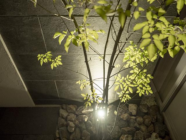 門柱下のアッパーライト ExLEAF 長野県K様邸 Spectacular garden lighting by lighting professionals. Enjoy a dramatic, romantic, even mysterious scene comparing to a day time.