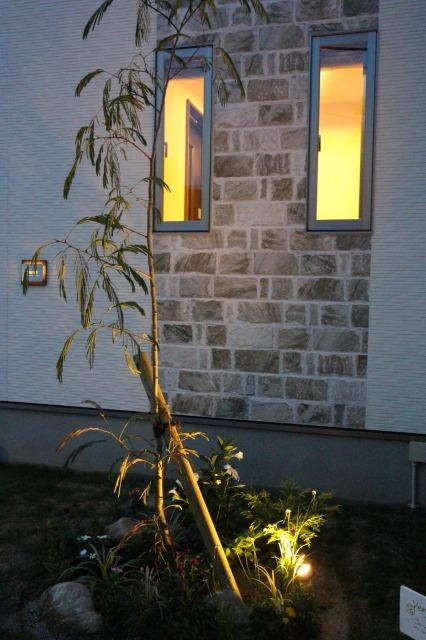 ネムノキに照明 株式会社太陽ハウジング 福岡県I様邸 Spectacular garden lighting by lighting professionals. Enjoy a dramatic, romantic, even mysterious scene comparing to a day time.