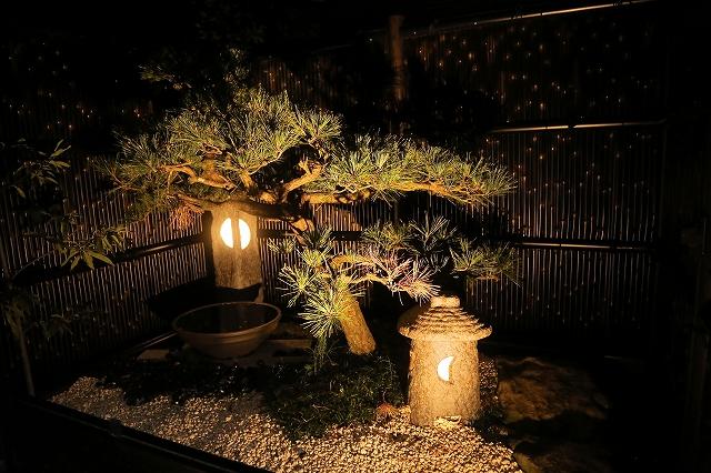 照明で夜をエレガントに 株式会社パインズガーデン 千葉県W様邸 Spectacular garden lighting by lighting professionals. Enjoy a dramatic, romantic, even mysterious scene comparing to a day time.